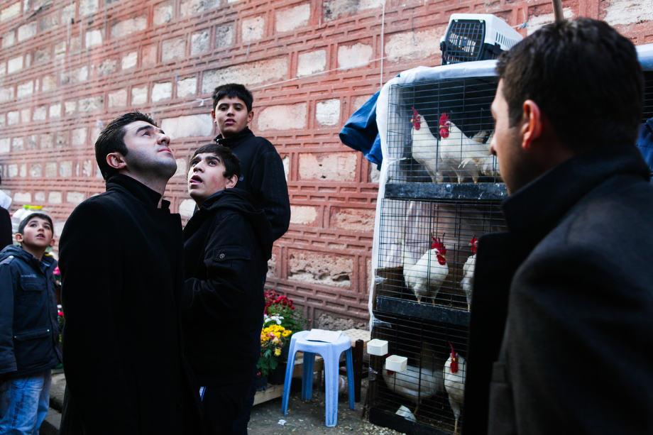 Turkish boys at a street market selling flowers and birds near the famous Yeni Cami mosque in Istanbul.