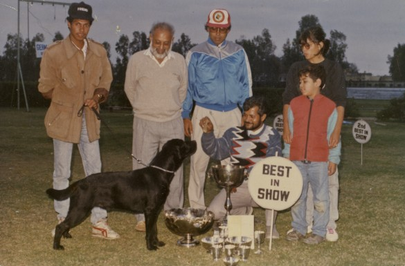 My parents at various dog shows in the 1970's and 1980's. Photograph courtesy of Karan Vaid.