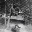 SwimmingInSummer1992
