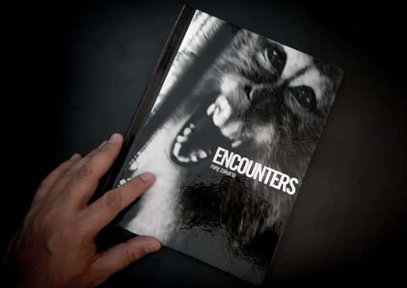 Encounters, by Rony Zakaria.