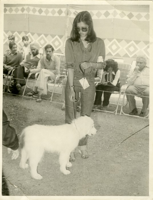 My parents at various dog shows in the 1970's and 1980's, Photograph courtesy of Karan Vaid.