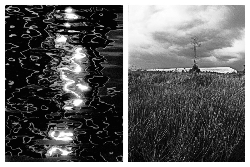 Left: Setting sun. Dance ends. Waves continue. (Port Klang. Selangor). Right: Sand dune. Reeds. The lone tree. Has seen it all. (Puchong. Selangor).